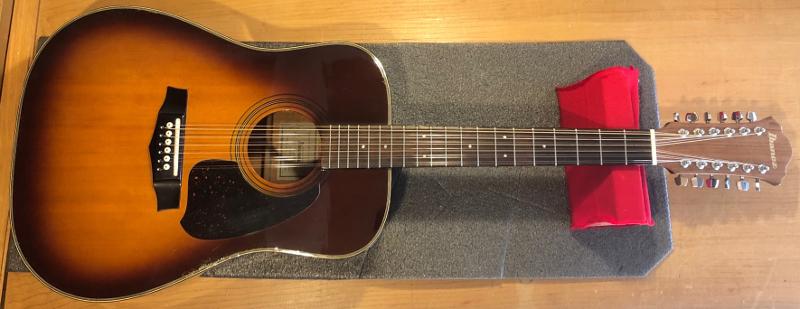 Ibanez 12 String Acoustic