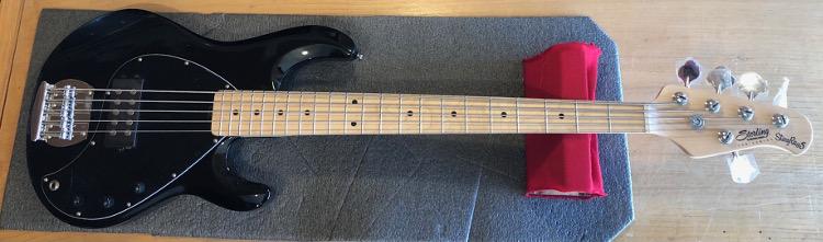 Sterling Stringray 5 String Bass