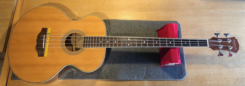 Avalaunche Acoustic Bass